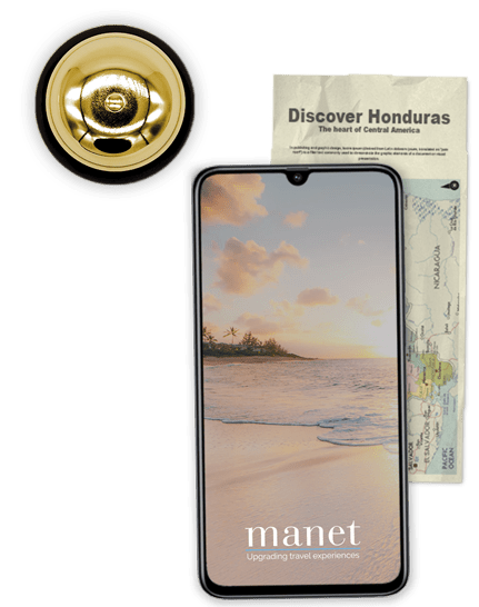 Manet Newsletter Popup